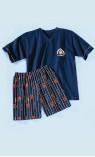 pyjashort - IDEEL